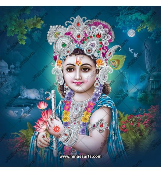 5017 Krishna