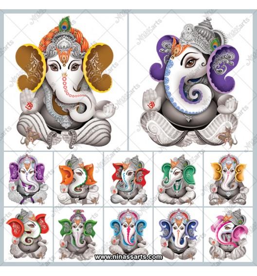 48704 Ganesha TC