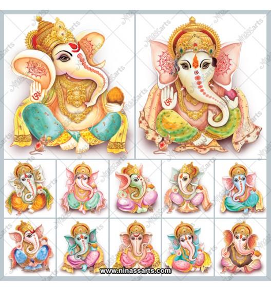 48707 Ganesha TC