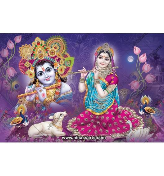 70013 Radhakrishna Poster