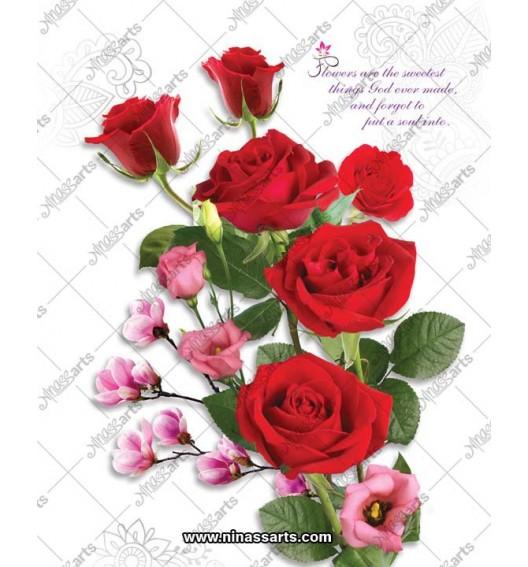 42064 Flower