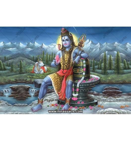 72036 Shiva Poster